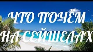 Сейшелы: Как добраться, Что посмотреть, Пляжи Маэ и Праслина