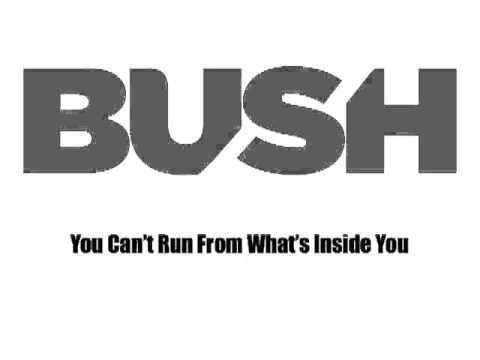 "BUSH ""The Mirror of the Signs"" Lyric Video"