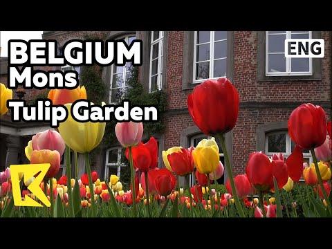 【K】Belgium Travel-Mons[벨기에 여행-몽스]1300송이의 튤립 정원, 문화유산 지정 가정집/Mons/Tulip Garden/Cultural Heritage