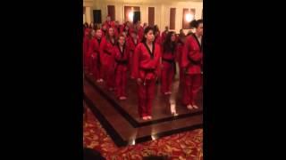 Martial arts Demo Warwick NY