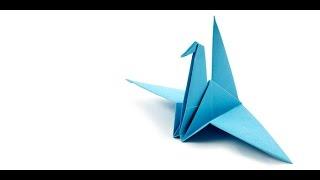 Using origami techniques in science  مهارات طي الورق الياباني تفيد في تطوير التكنولوجيا