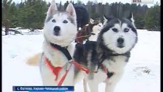 Возможность провести время с символом года - собакой(ГТРК Вятка)