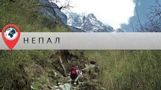 видео Треккинг в базовый лагерь Аннапурны - Непал