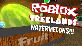 Roblox TreeLands Watermelons!