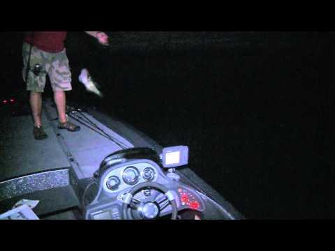 Fishing At Night With Blacklights