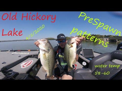 Old Hickory Lake Prespawn Bass Fishing