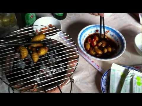 Ăn Đuông dừa tắm mắm nhĩ  Cần Thơ