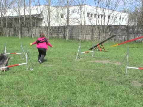 Agility Training – Xanthine