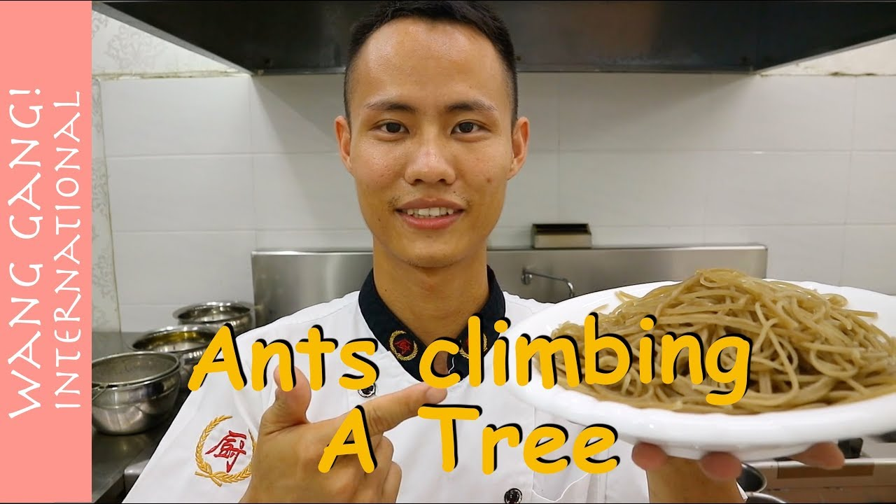 Chef Wang teach you: