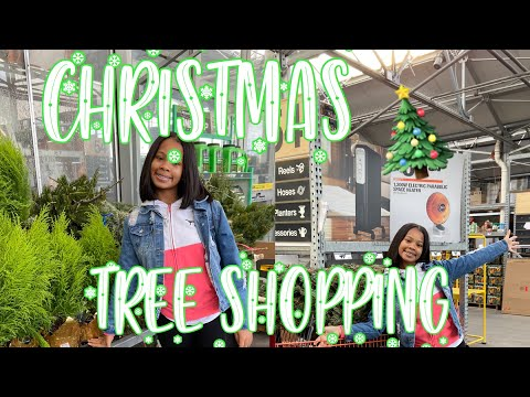 COME WITH ME TO GET MY CHRISTMAS TREE! | VLOGMAS DAY 10