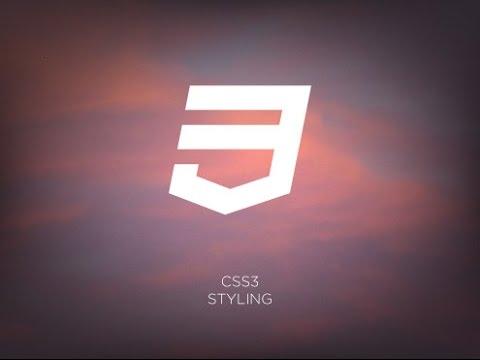 Стилизация чекбоксов и радиокнопок на чистом CSS с