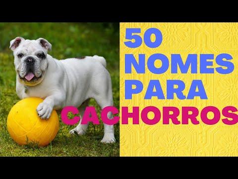 50 NOMES PARA