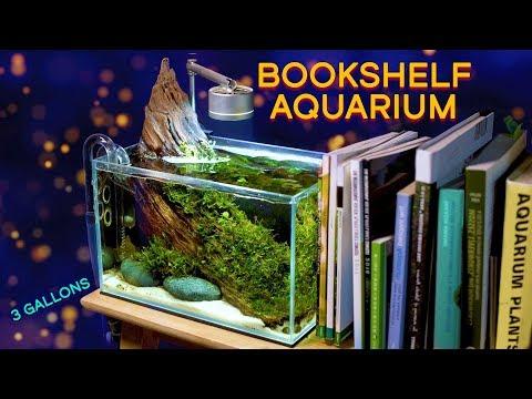 Aquarium Goals: The Bookshelf Aquarium — TINY Aquascape