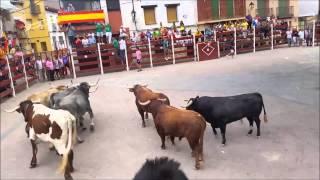 Encierro de Alhondiga con tres toros 06092015