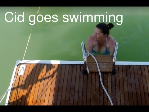 Cid goes swimming. Ant blows a fuse!
