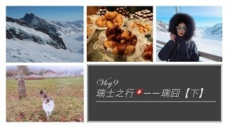 【Vlog 9】瑞士旅行🇨🇭Swiss travel vlog(下)因特拉肯-少女峰Grindelwald-洛桑-日内瓦 ❤超美瑞士❤