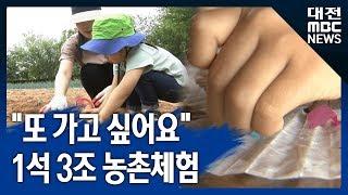 대전MBC뉴스39소득 늘고 활력 쑥쑥39 농촌체험마을 …