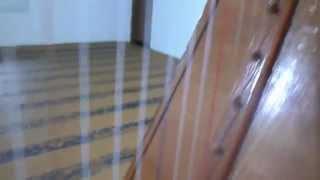 Harpa Paraguaia Artesanal - Compre ou estude na ABC Musical