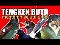 Masteran Burung Lomba Paling Disukai Juri Tengkek Buto Gacor  Mp3 - Mp4 Download