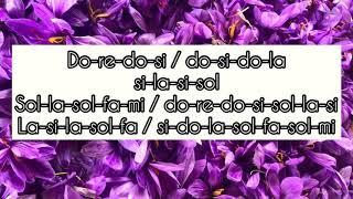 Bir Şarkısın Sen (Samanyolu) Melodika İle Nasıl Çalınır?