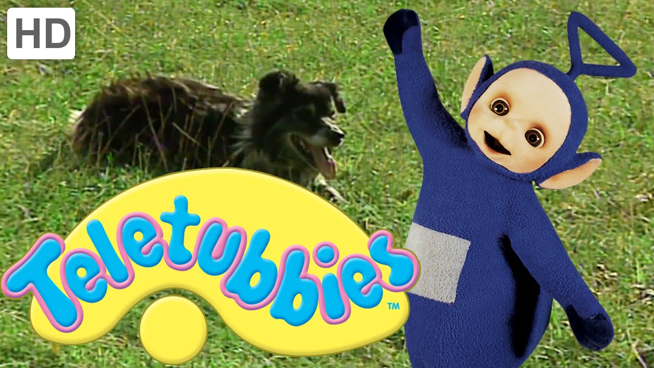 teletubbies animals pack 3 full episode compilation