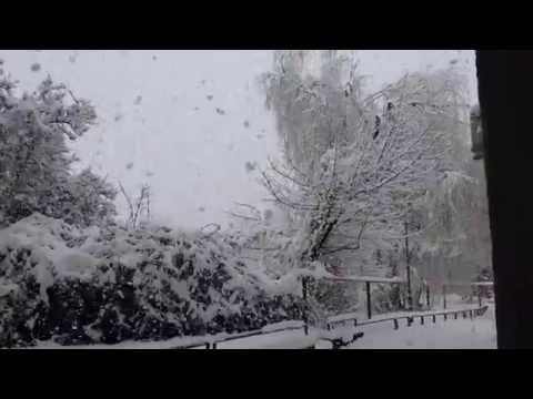 Beautiful snowing - large snowflakes