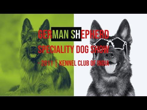 German Shepherd Speciality Dog Show 2011 | Kennel Club of India