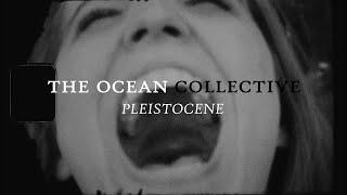 The Ocean - Pleistocene (OFFICIAL VIDEO)