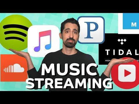 Are There Too Many Music Streaming Services? | Mashable Explains