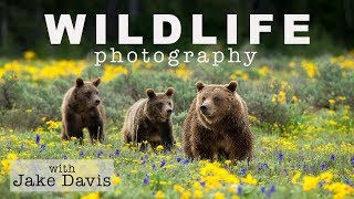 Wildlife Photography Interview with Jake Davis thumbnail
