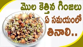 మొల కెత్తిన గింజలు ఏ సమయంలో తినాలి.. || Right time to eat sproutes seeds
