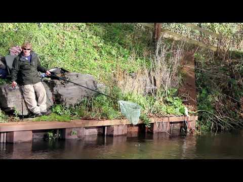Coarse Fishing On The River Culm