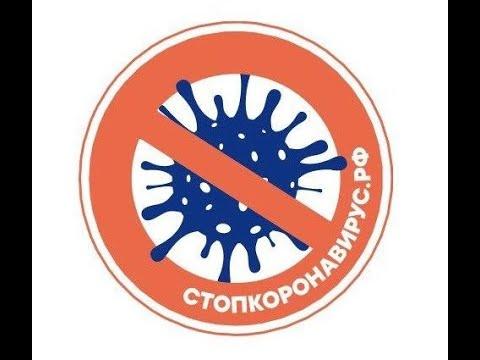 3 Отчет о текущей ситуации с коронавирусом в РФ статистика, данные из регионов,меры Правительства РФ