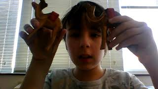 Dalia's Two Olive-Wood Camels