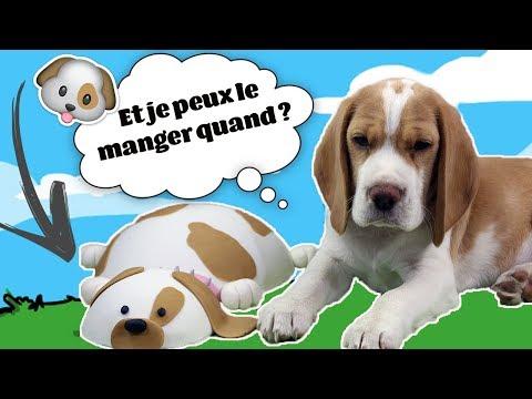 ♡•-un-gÂteau-pour-nana-•♡