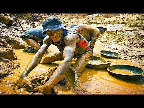 How gold is harvested in Africa. Tsetse flies' bite