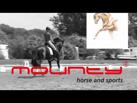 Mounty horse and sports