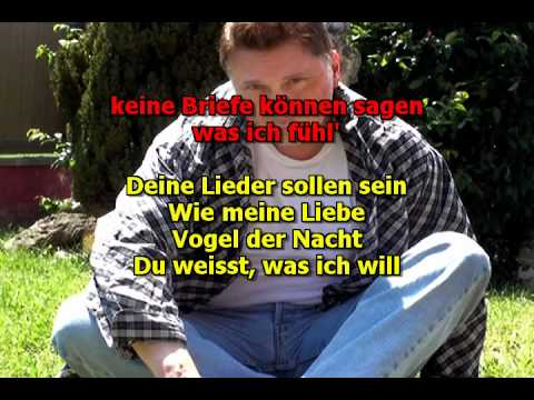 Mike Malak & The Fakers  -  Vogel Der Nacht  (Stefan Remmler, cover, lyrics)