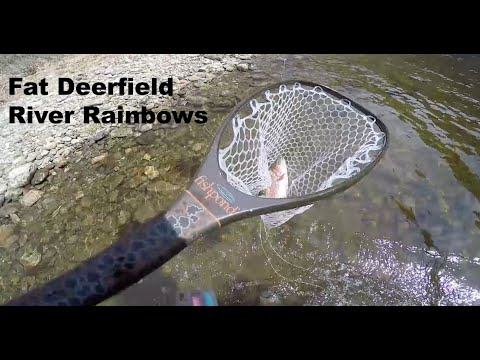 Early Spring Fly Fishing On The Deerfield River In Western Massachusetts