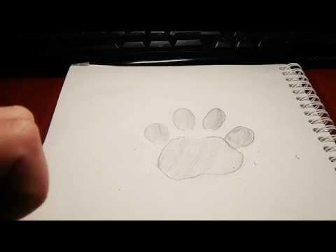Отпечаток лапы(следы)|НАКОНЕЦТО НОВОЕ ВИДЕО :)