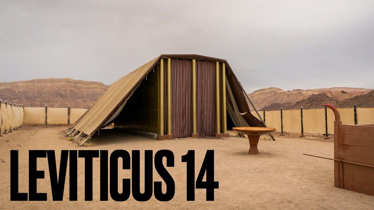Leviticus 14 | Pastor Mark Abrams