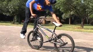 Cycle Stunt Mania in CHANDIGARH