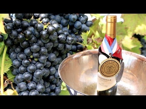 New Jersey Wine Industry Gets Rutgers Education