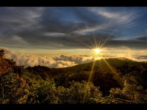Mystic Rainforest Chillout Mix - The Green Edition Del Mar