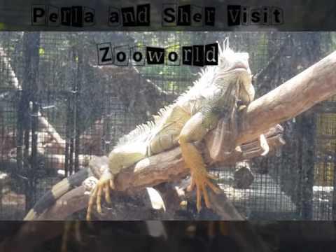 Zoo world Caltex Stop, San Fernando Pampanga