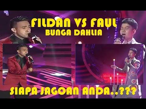 Fildan VS Faul BUNGA DAHLIA | Siapa Jagoan Anda...???