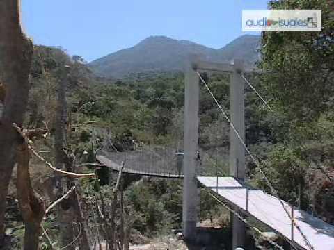 Guadalupe, San Vicente: Pincel joven de Oriente (2012)