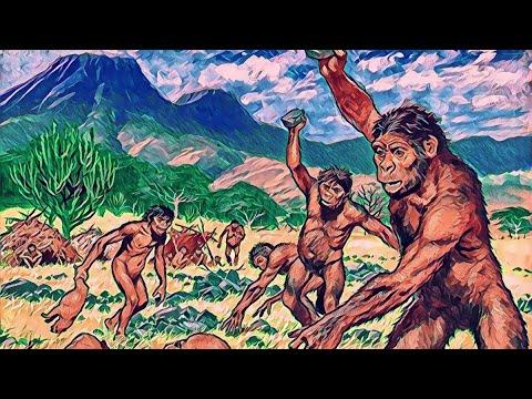 Рождение Человечества: как Обезьяна стала Человеком?