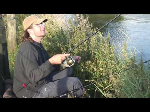 Top Tips  - Thames carp - Martin Bowler