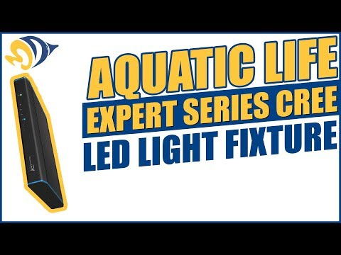 Aquatic Life Expert Series Cree LED Light Fixture Product Demo